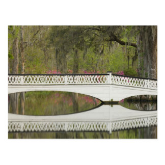 United States; South Carolina; Charleston; 3 Postcard
