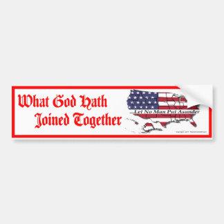 Unity Bumper Sticker