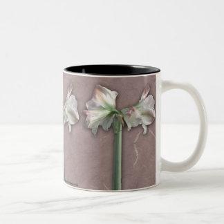 Unity Flowers in Low Intensity Mug