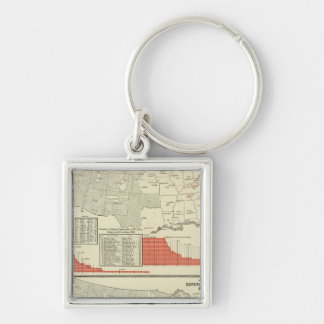 Universities, colleges Silver-Colored square keychain