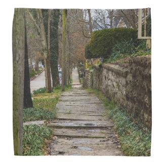 Unlevel Pathway Bandana