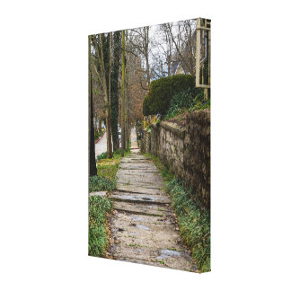Unlevel Pathway Canvas Print