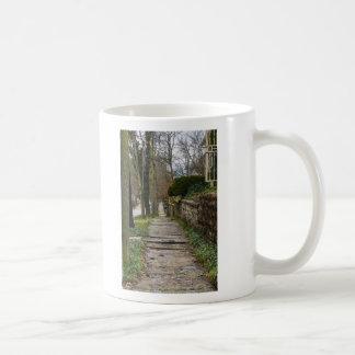 Unlevel Pathway Coffee Mug