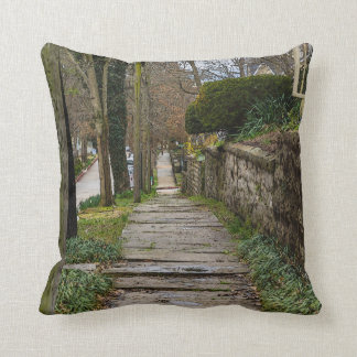 Unlevel Pathway Throw Pillow