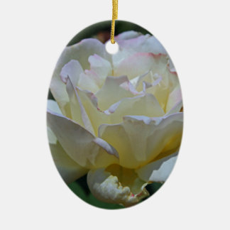 Unmistakable Grace Ceramic Oval Ornament