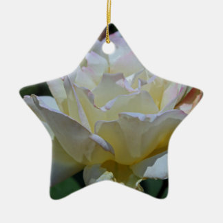 Unmistakable Grace Ceramic Star Ornament