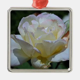Unmistakable Grace Silver-Colored Square Ornament