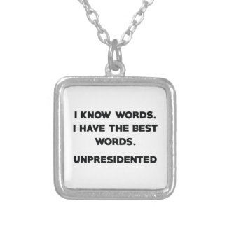 Unpresidented Silver Plated Necklace