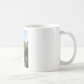 Unripe green tomatoes in the garden coffee mug