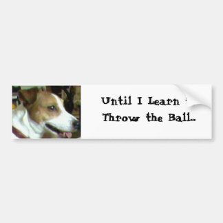 Until I Learn to Throw the Ball... Bumper Sticker