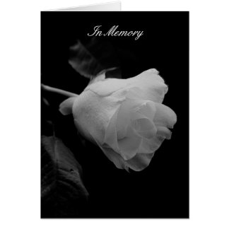 """Until"" White Rose Sympathy Card"