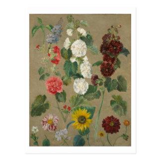 Untitled (Flowers) (oil on board) Postcard