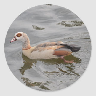 Unusual Duck Round Sticker