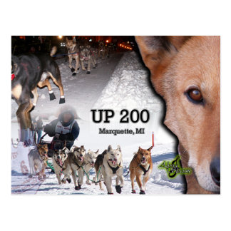 UP 200 Collage Postcard