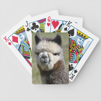 Up Close Grey Alpaca Playing Cards