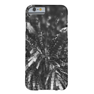 Up Close Photo of Tree Barely There iPhone 6 Case