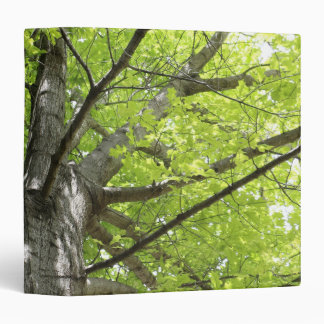 UP THE OAK TREE 3 RING BINDER