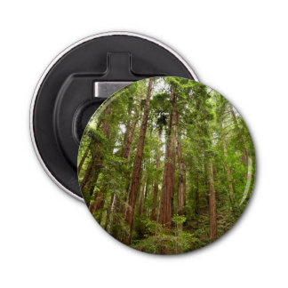 Up to Redwoods at Muir Woods National Monument Bottle Opener