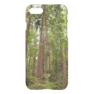 Up to Redwoods at Muir Woods National Monument iPhone 8/7 Case