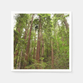 Up to Redwoods at Muir Woods National Monument Paper Napkin