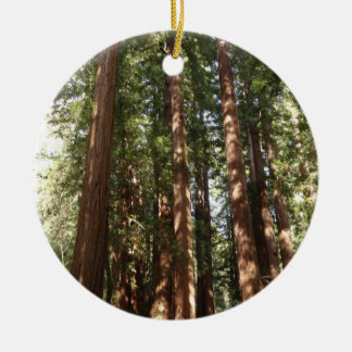Up to Redwoods II at Muir Woods National Monument Round Ceramic Ornament