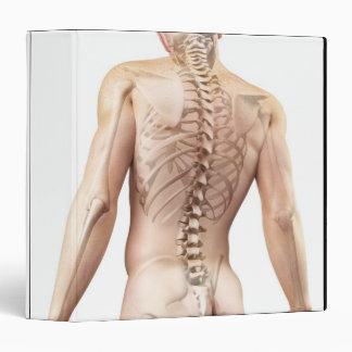 Upper Body Bones 2 Vinyl Binders