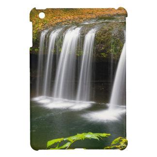 Upper Butte Creek Falls in Autumn iPad Mini Case