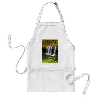 Upper Butte Creek Falls in Autumn Standard Apron
