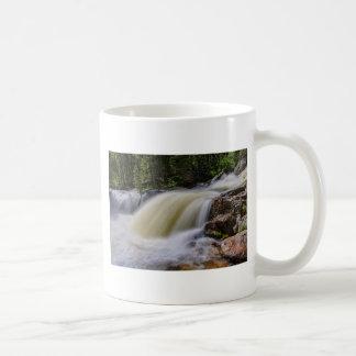 Upper Copeland Falls Coffee Mug