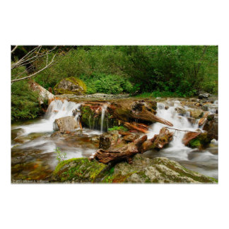 Upper Perry Creek Falls Poster