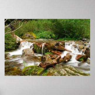 Upper Perry Creek Falls Poster