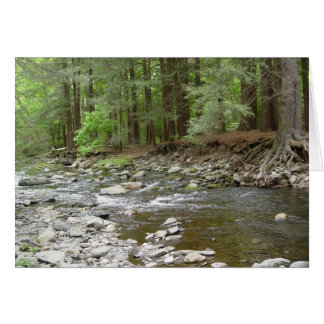 Upper Raymondskill Falls Card