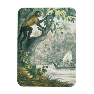 Upper reaches of the Amazon, from 'Das Buch der We Rectangular Photo Magnet