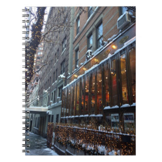 Upper West Side Icicles New York City Winter NYC Notebooks