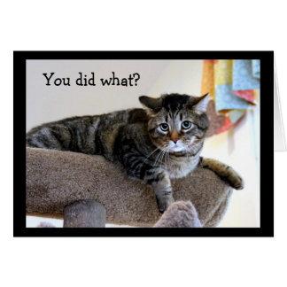 Upset Tabby Cat Card