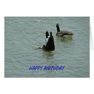 Upside Down Goose, Birthday Card