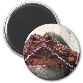 Upside down moth 2 inch round magnet