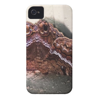 Upside down moth iPhone 4 Case-Mate cases