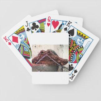 Upside down moth poker deck