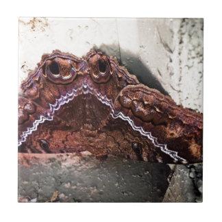 Upside down moth tile