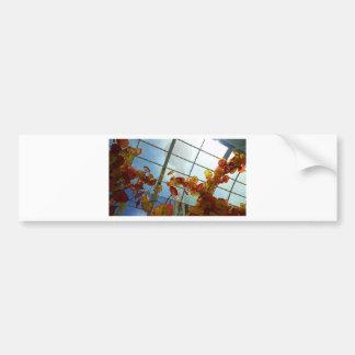 'Upward Bound' Letter Bumper Sticker