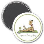 Upward Facing Dog - yoga pose Magnet