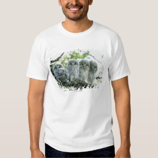 Ural owetsl. Ikeda-machi, Hokkaido, Japan T-shirt