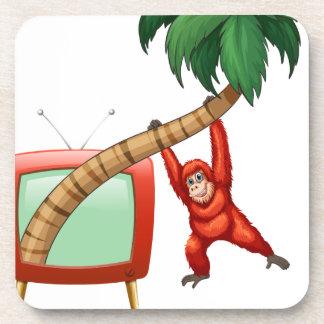 Urangutan hanging on the coconut branch beverage coaster