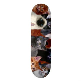 Urban Jungle Cats Custom Pro Park Board Skateboard