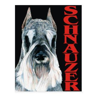 Urban Schnauzer Dog Design Postcard
