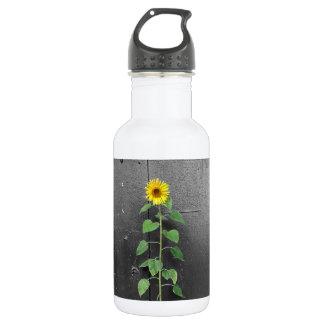 Urban Sunflower