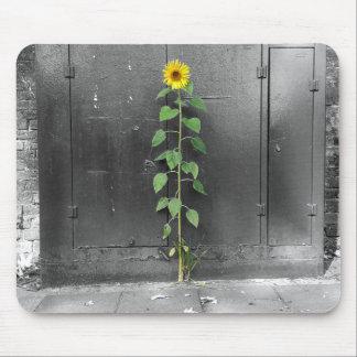 Urban Sunflower Mouse Pad