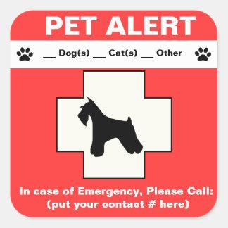 Urgence vigilante d'animal familier autocollants carrés