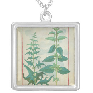 Urticaceae Silver Plated Necklace